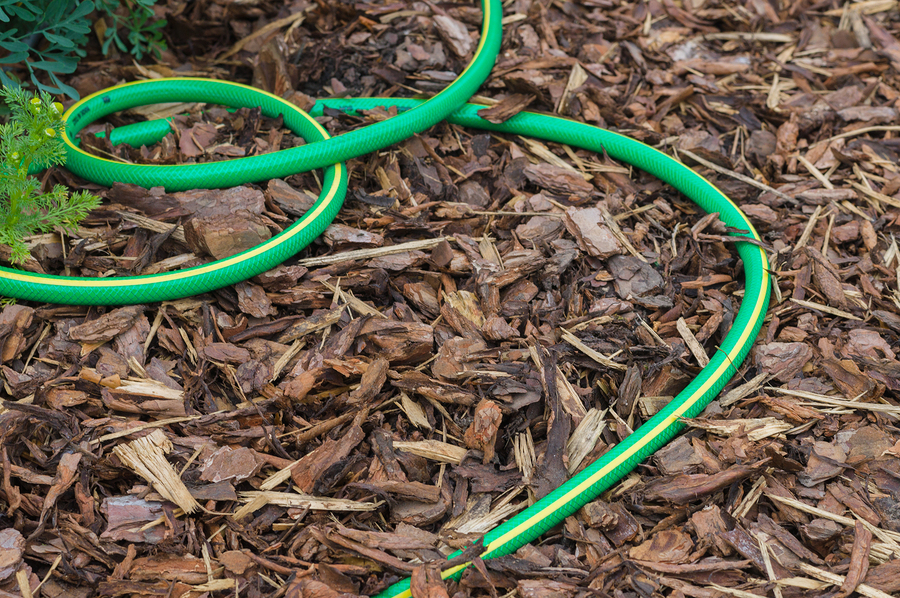 Garden Hose On Ground Covered By Natural Bark, Gardening Backgro